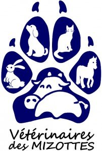 LogoMizottesDefinitif